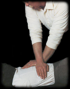 Home Chiropractic DVD + Handbook http://Glukom.com