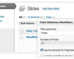 WooSlider  The Ultimate Slideshow Plugin for WordPress http://Glukom.com