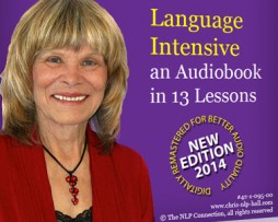 Christina Hall Language Intensive Remastered 2014