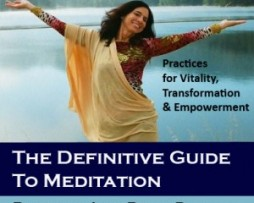 Julie Renee - The definitive guide to meditation Series