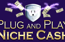 Andrew Hansen - Plug and Play Niche Cash