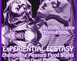 Brian David Phillips - Experiential Ecstasy